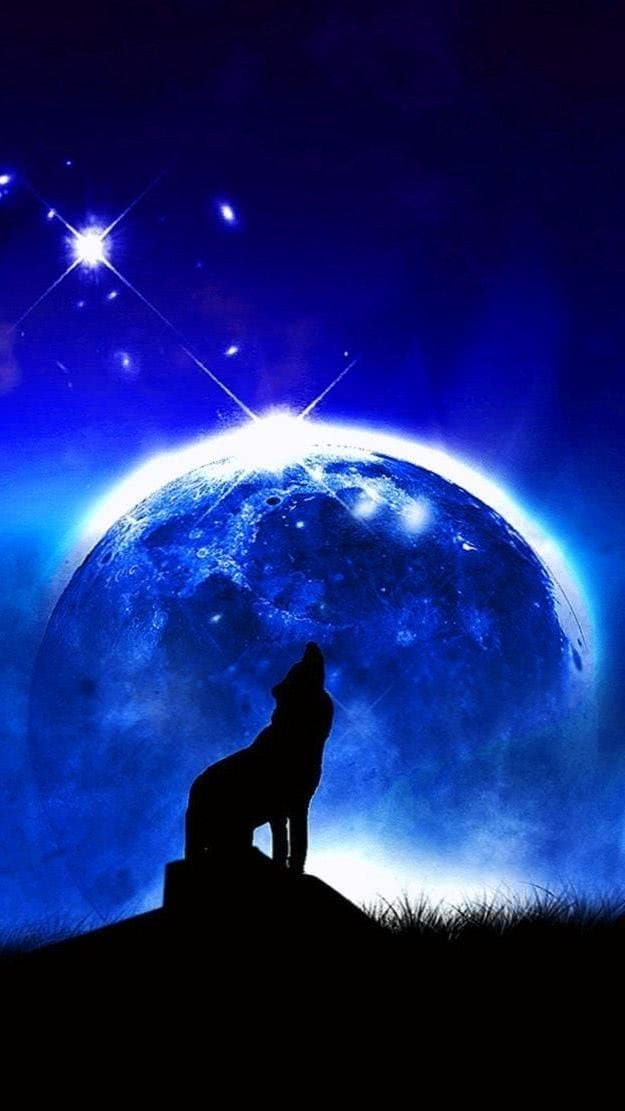 iPhone Wallpapers Wolf Howling At The Moon