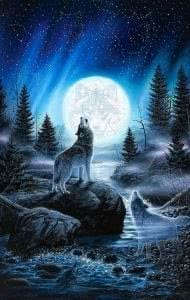 Wolf Howling At The Moon Mobile Wallpapers