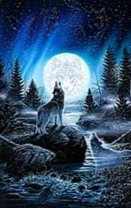 Wolf Howling At The Moon Phone Wallpapers