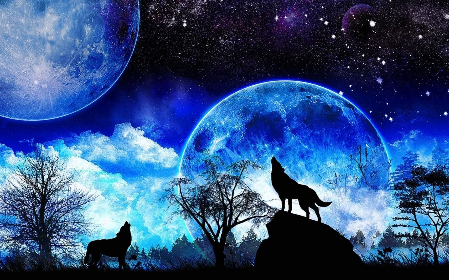 Free Wolf Moon Wallpapers Wolf Wallpapers Pro