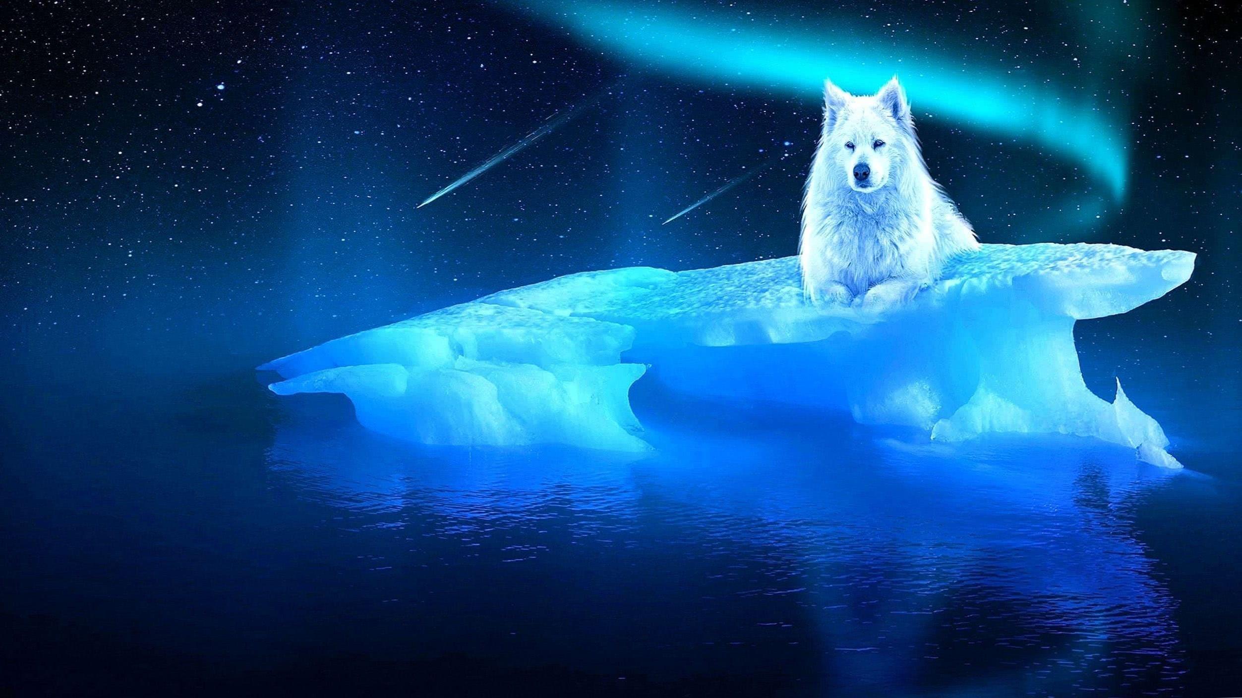 Fantasy Ice Wolf Wallpaper