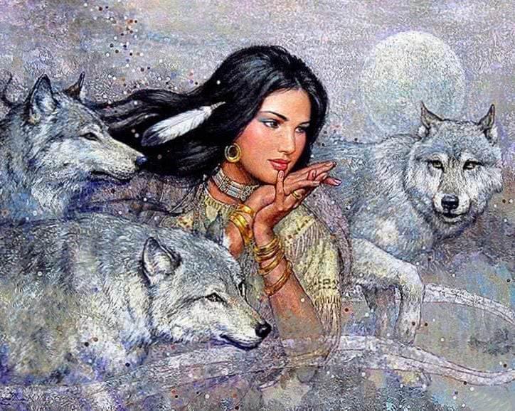 Indian Wolf Wallpaper