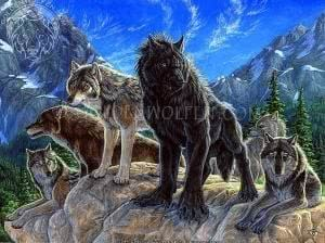 Wallpapers Wolves And Werewolves