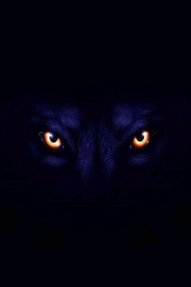 Black Wolf With Red Eyes Wallpapers Wolf Wallpaperspro
