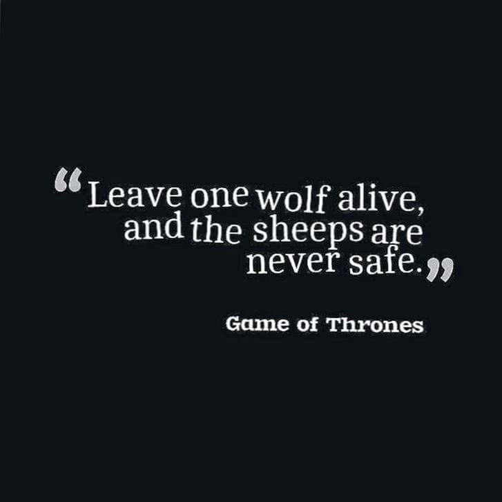 Leave One Wolf Alive Wallpaper