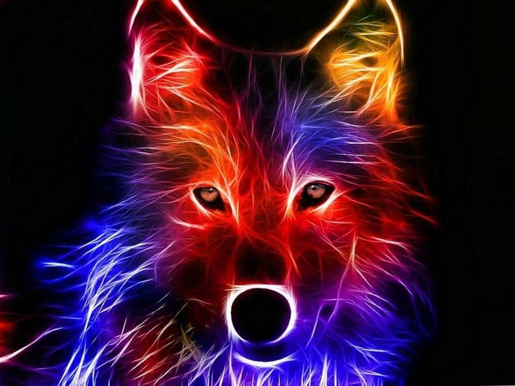 High Quality Wolf Wallpapers