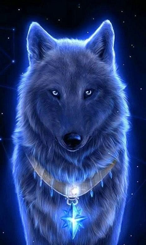 Live Wolf Wallpapers