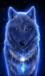 Wolf Live Wallpapers Apk