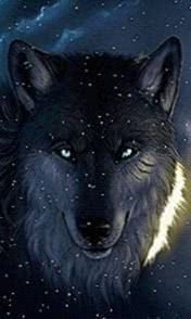 Snow Wolf Wallpapers For Android
