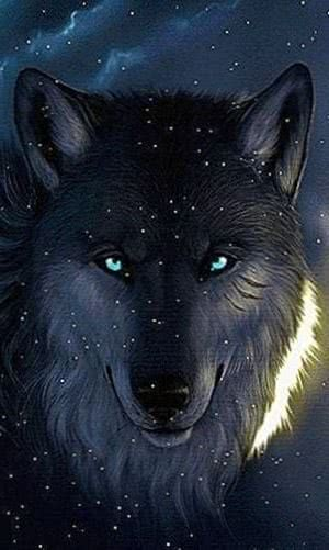 Live Wallpapers Black Wolf
