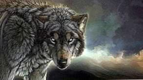 Wolf Live Wallpapers Windows 10