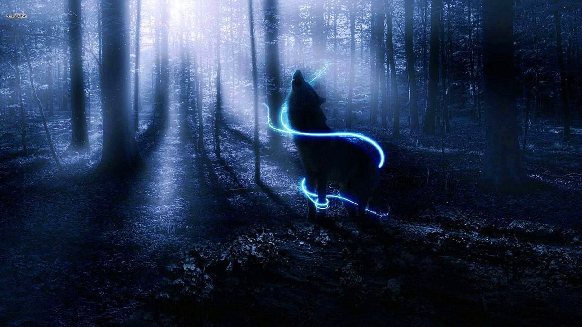 Lonely Wolf HD Wallpapers