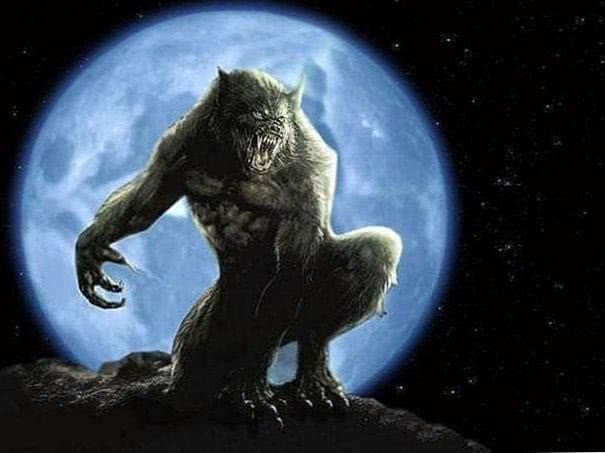 Werewolf Wallpaper High Resolution