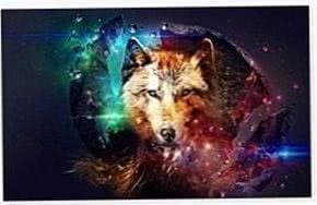 Magic Wolf Wallpapers HD