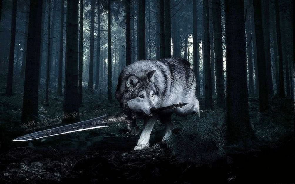Sif The Great Grey Wolf Wallpapers