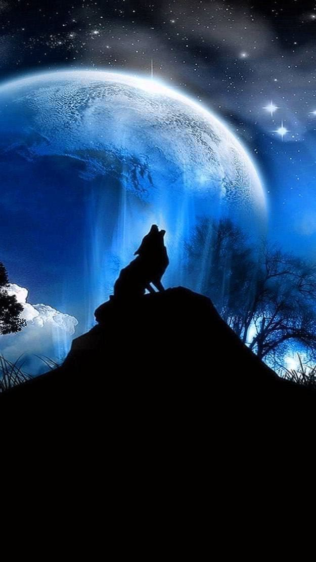 Wolf And Moon iPhone Wallpapers