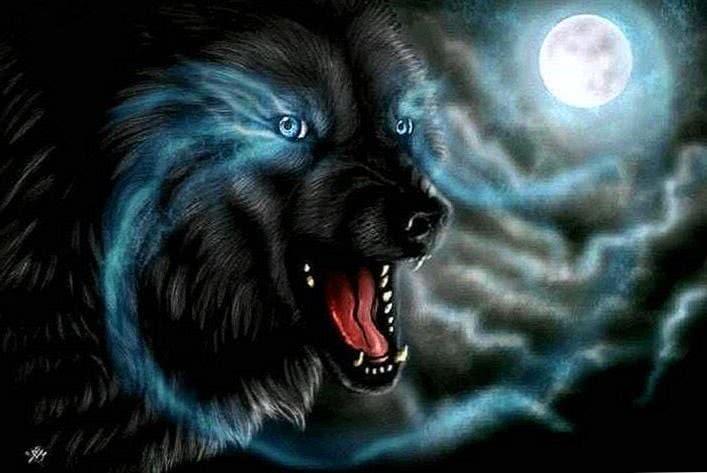 Wolves Wallpaper Blue Eyes