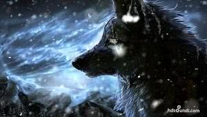 Epic Wallpapers Wolf