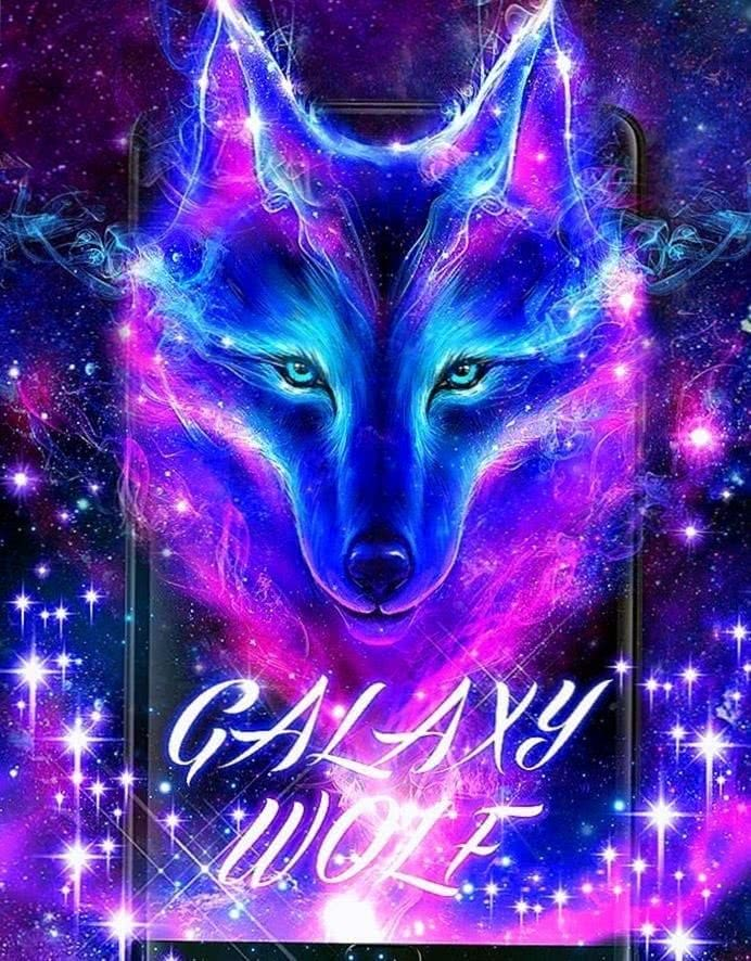 Wolf Wallpapers Night Sky