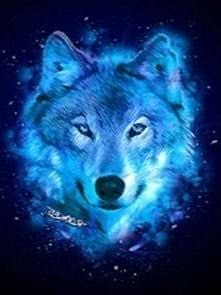 Night Wolf HD Wallpapers