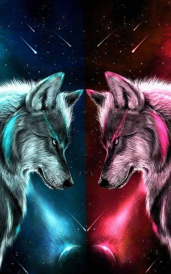 pink aqua wolves wlfe pinterest wolf anime wolf wolf wallpapers.pro