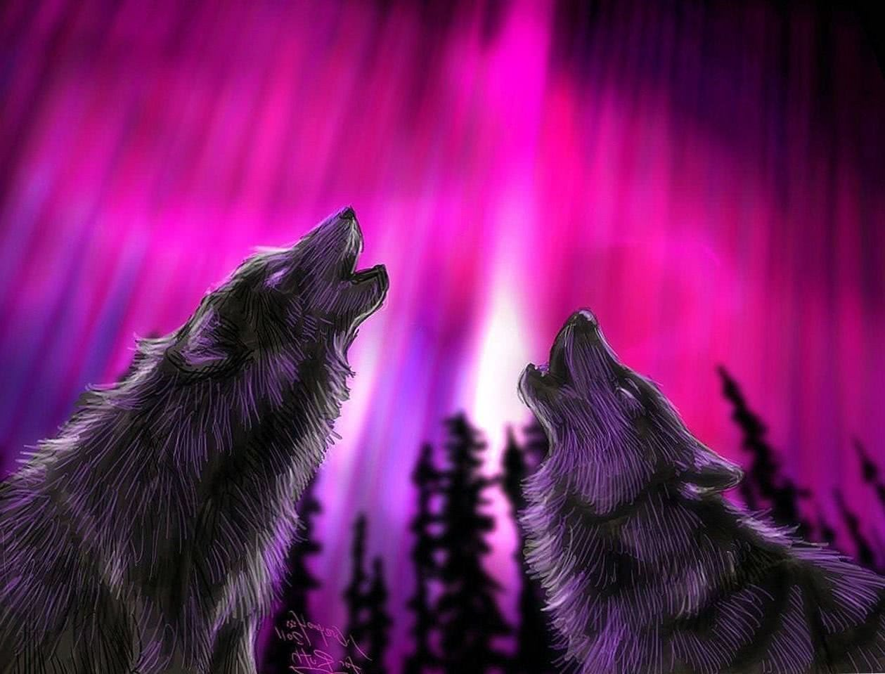 Wolf Pink Wallpapers