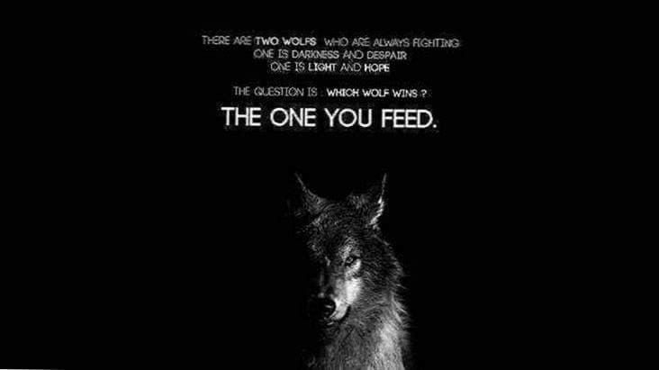 Wallpaper Wolf Quote