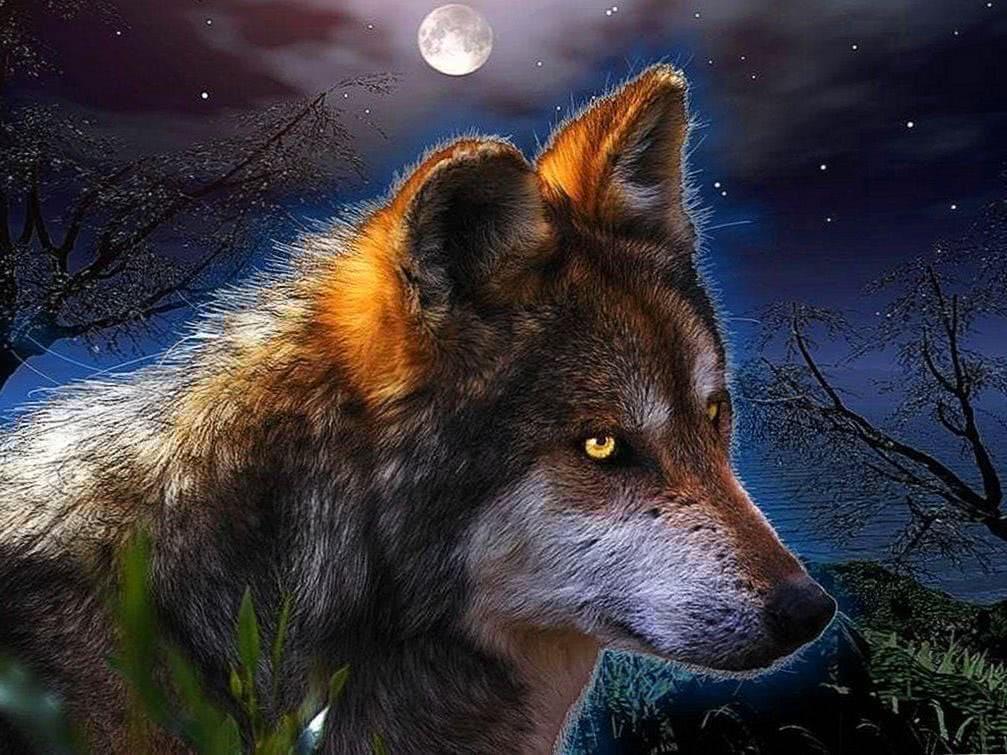 Fantasy Wolf Desktop Wallpaper