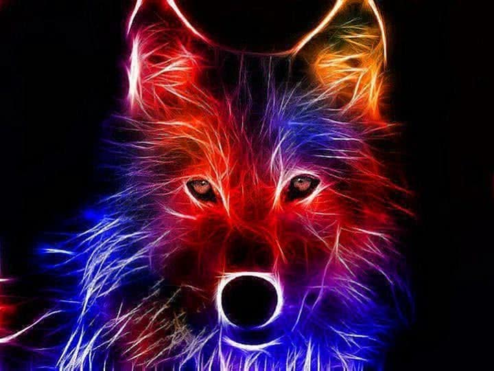 Cool Rainbow Wolf Wallpapers
