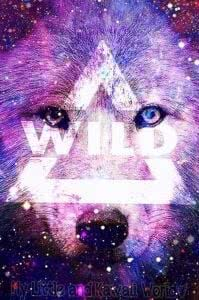 Wolf Wallpapers For WhatsApp
