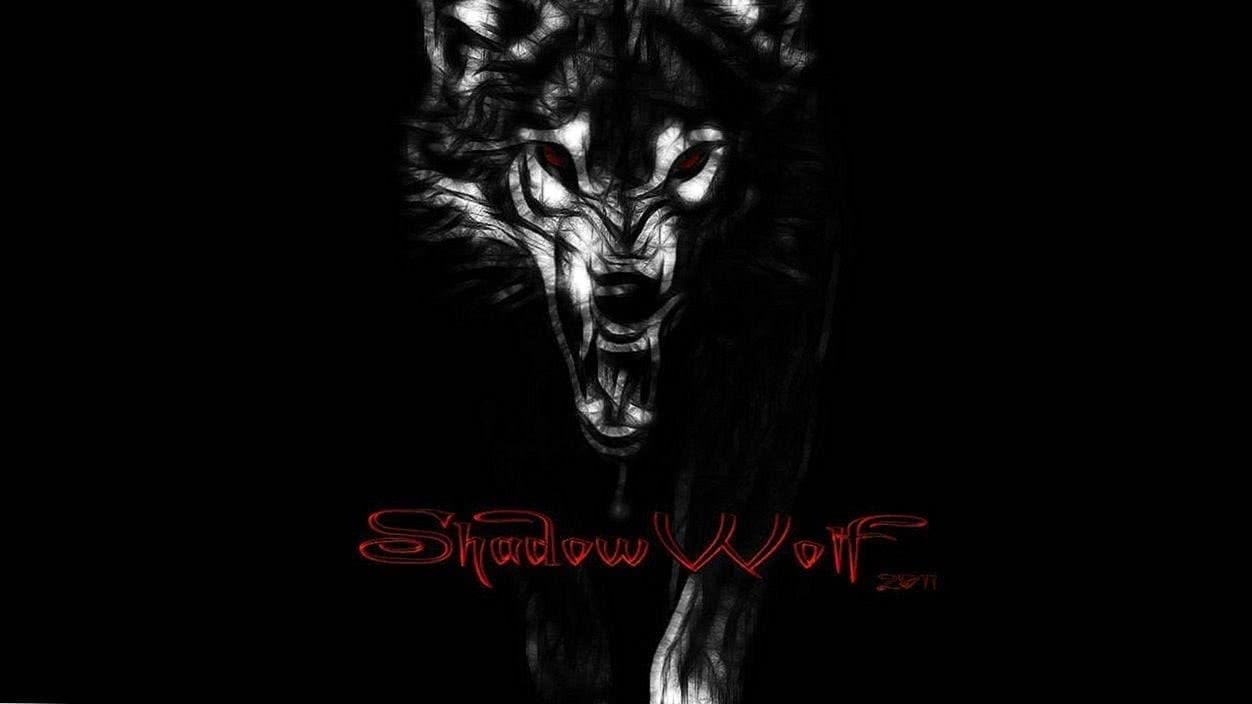 shadowwolf wallpaper by shadowwolf 666 on deviantart 1 1 wolf wallpapers.pro