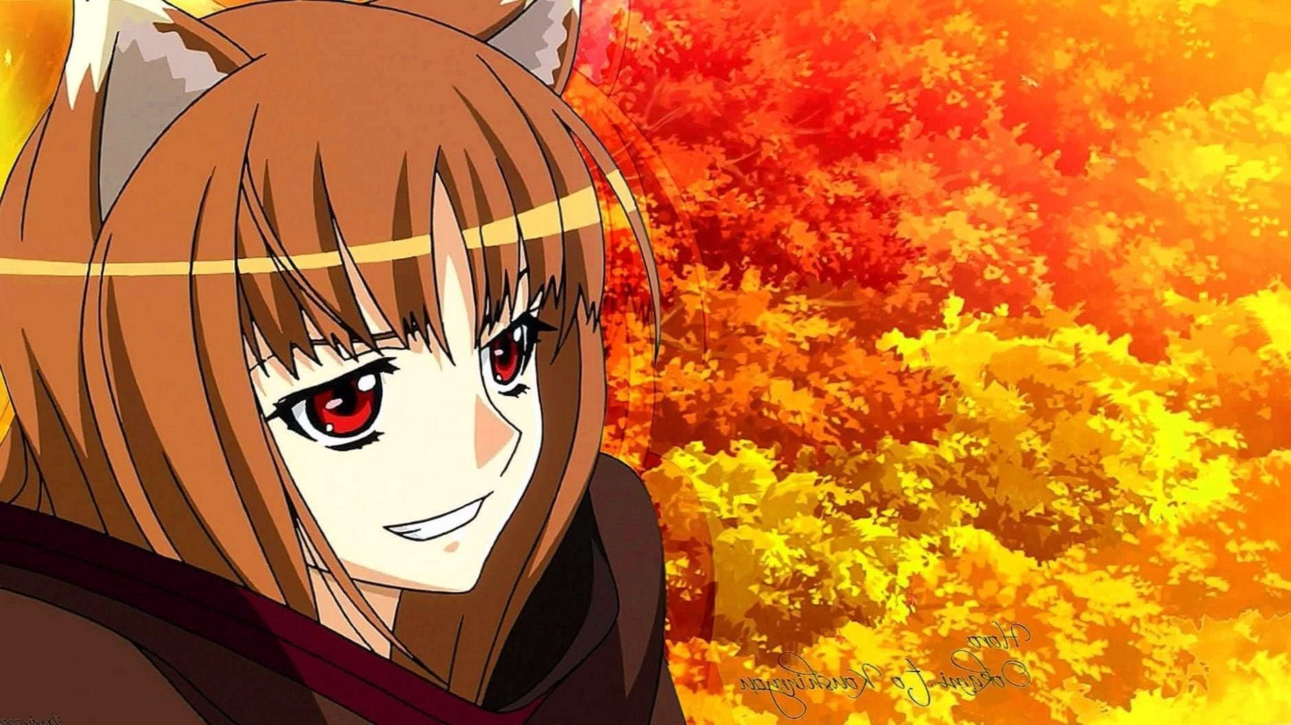 Spice And Wolf Wallpapers HD