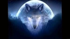 Spirit Wolf Wallpapers