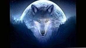 Wolves Wallpapers New Moon
