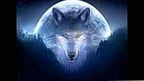Wallpapers Wolf Spirit
