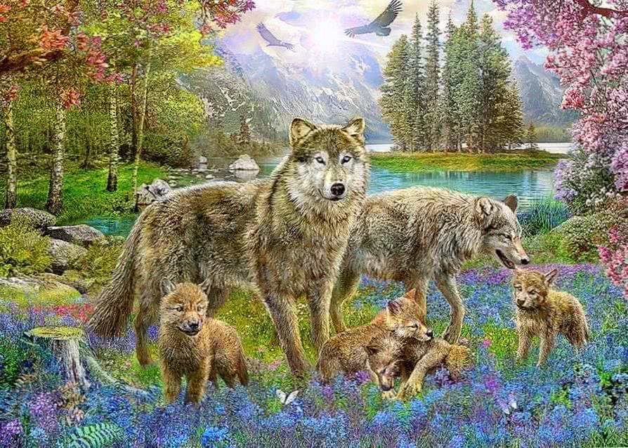 Wolf Spring Wallpaper