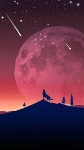 Wallpapers Samsung Wolf