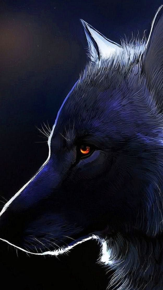 Wallpaper Wolf Doodle