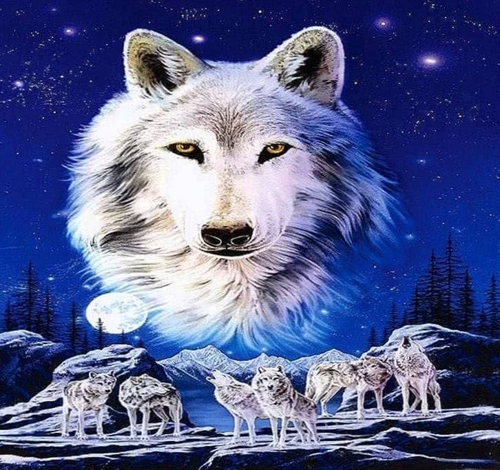 Spirit Of The Wolf Wallpaper