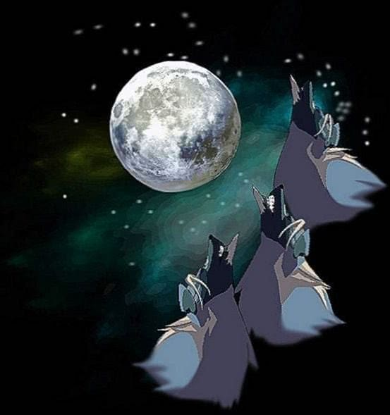 3 Wolf Moon Wallpaper