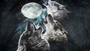 3 Wolf Moon Wallpapers