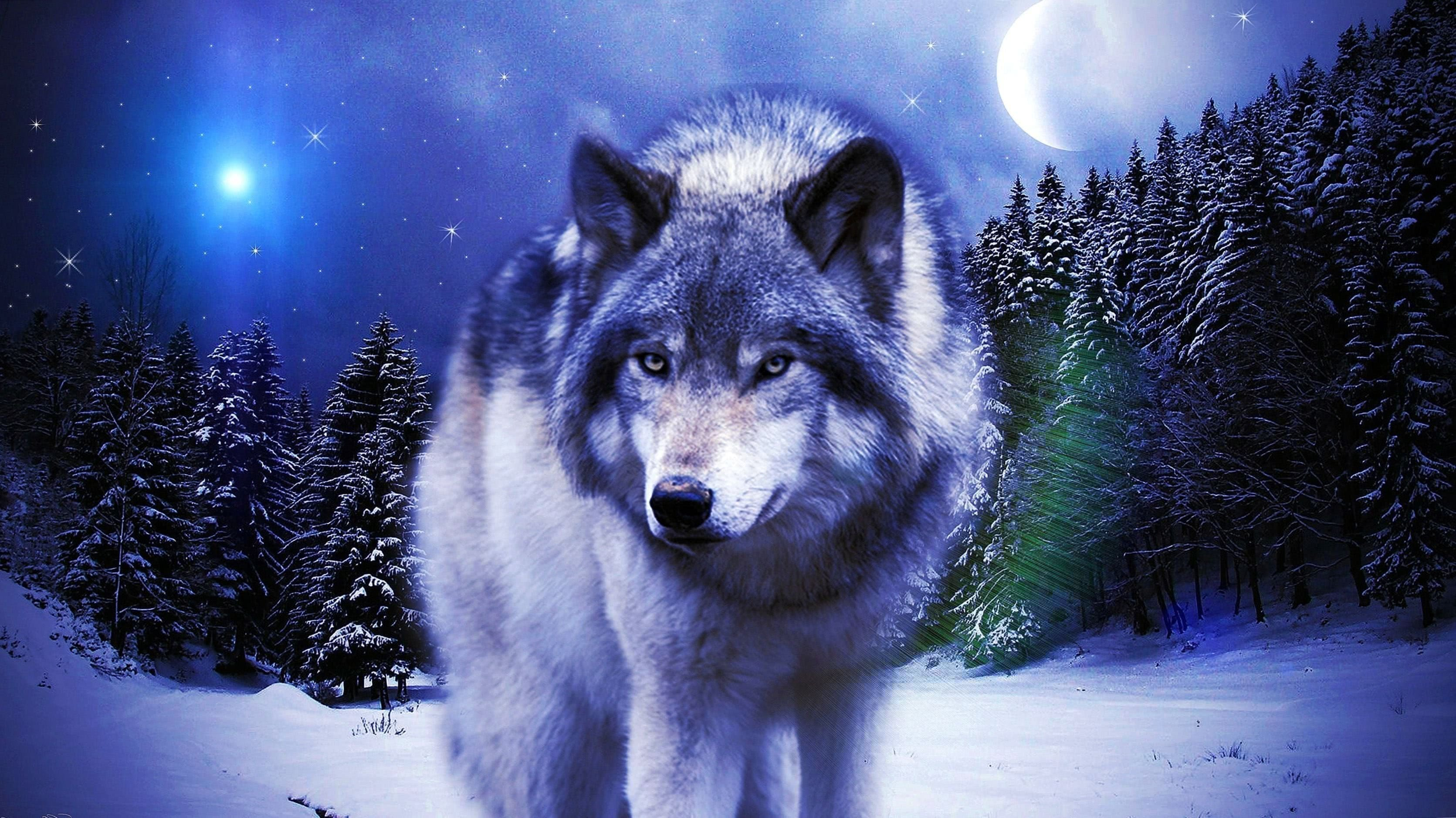 Desktop Wallpapers Wolves