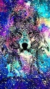 Galaxy Wolf Wallpapers App