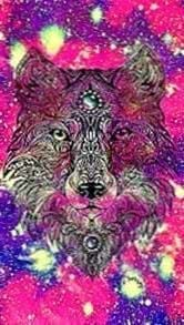 Galaxy Wolf Wallpapers For Android