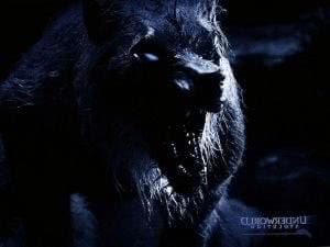 Werewolf Underworld Wallpapers