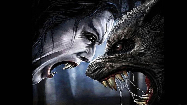 Wolf Vs Vampire Wallpapers