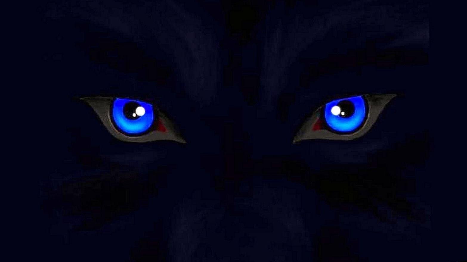 Wolf Eyes HD Wallpaper