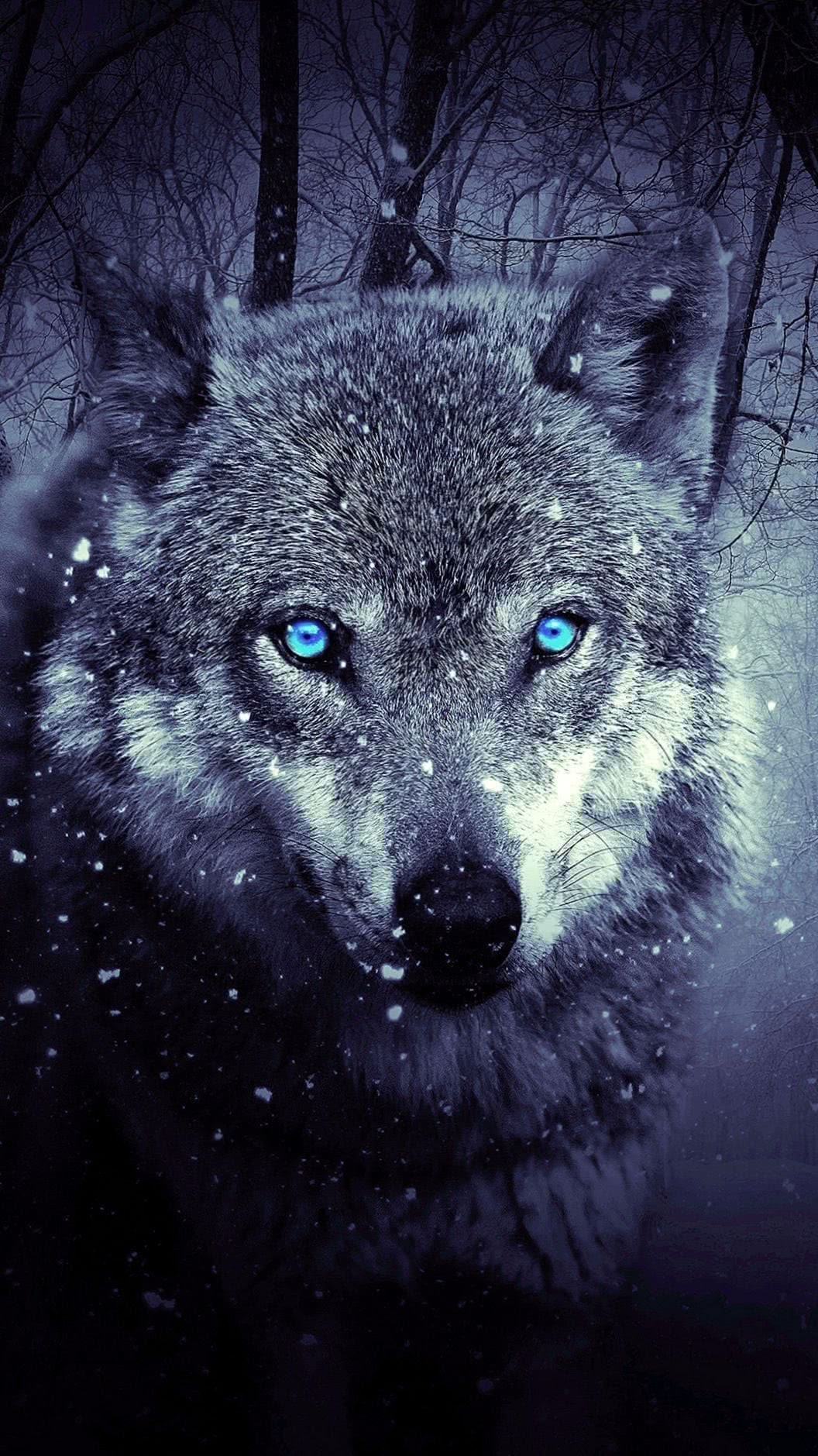iPhone 6S Wolf Wallpaper