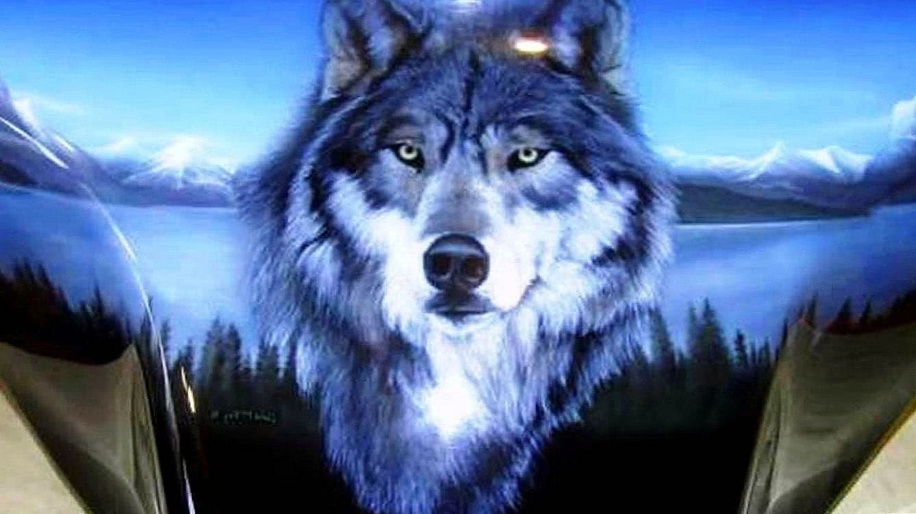 Wallpapers PC HD Wolf