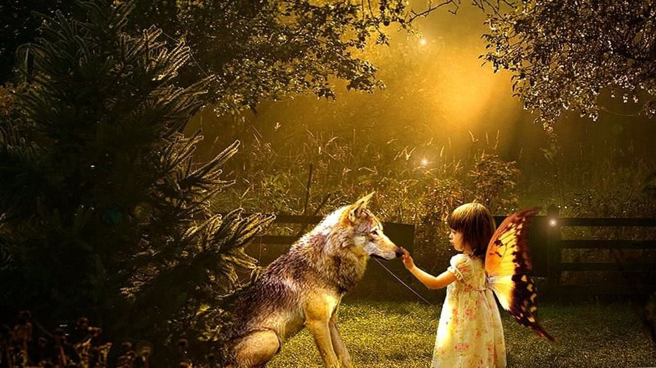 Wolf With Girl HD Wallpaper